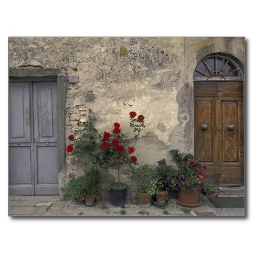 Ruusut ja betoniseinä