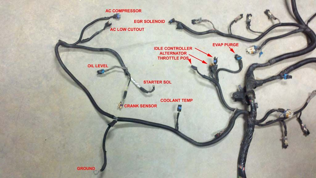 vortec 4 8 5 3 6 0 wiring harness info 03 chevy silverado mods rh pinterest com ls swap wiring harness diy ls swap wiring harness guide
