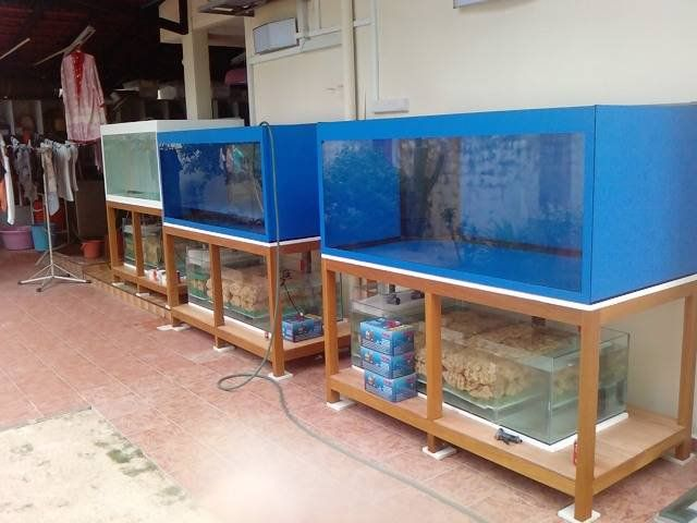 creative inspiration beautiful aquariums for home. 29 Best Home Aquarium Furniture Ideas To Beautify Your Room  Fish tank stand ideas and Tank