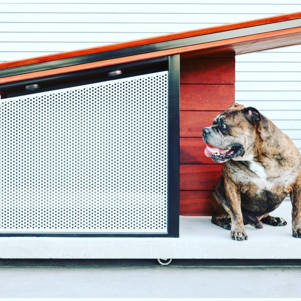 Mod Dog Diggity Dogs Moderndoghouse Dogonit Doghouse