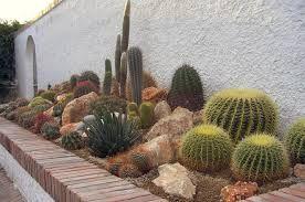 Risultati immagini per giardino roccioso per piante grasse - Immagini giardini rocciosi ...