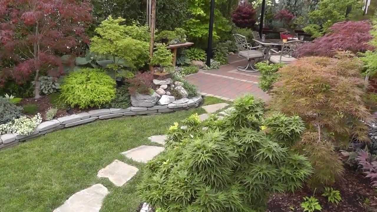 More good ideas from youtube   The Summer Garden   Japanese Maple Garden. More good ideas from youtube   The Summer Garden   Japanese Maple