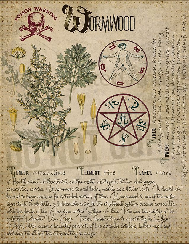 Book of Shadows, Printable pages of Herbs, Witchcraft, Herbal Grimoire BOS Sheets, Magic Potion, Spell Ingredient, Green Witch, Herbarium 14