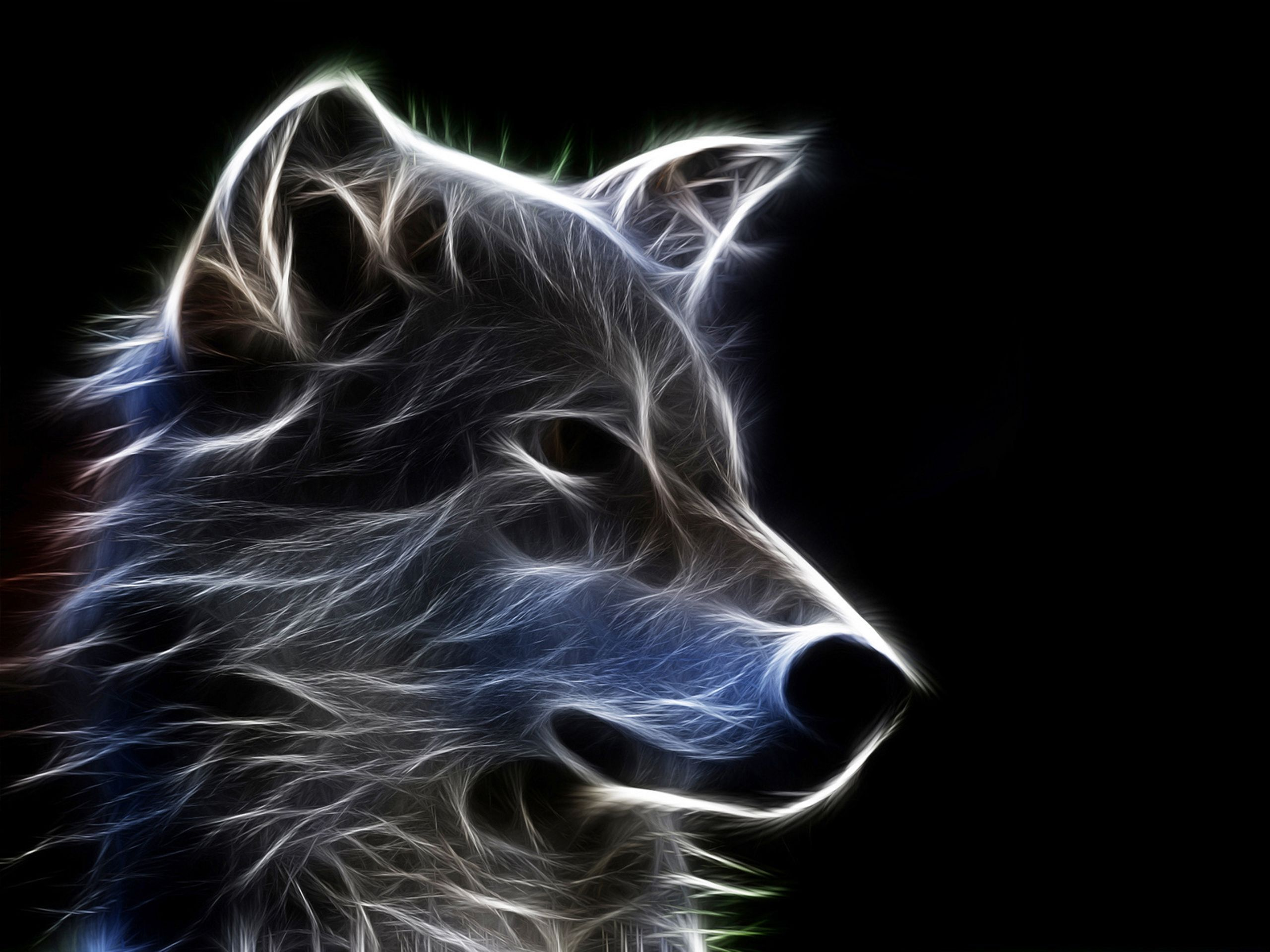 Fractal Animal Background