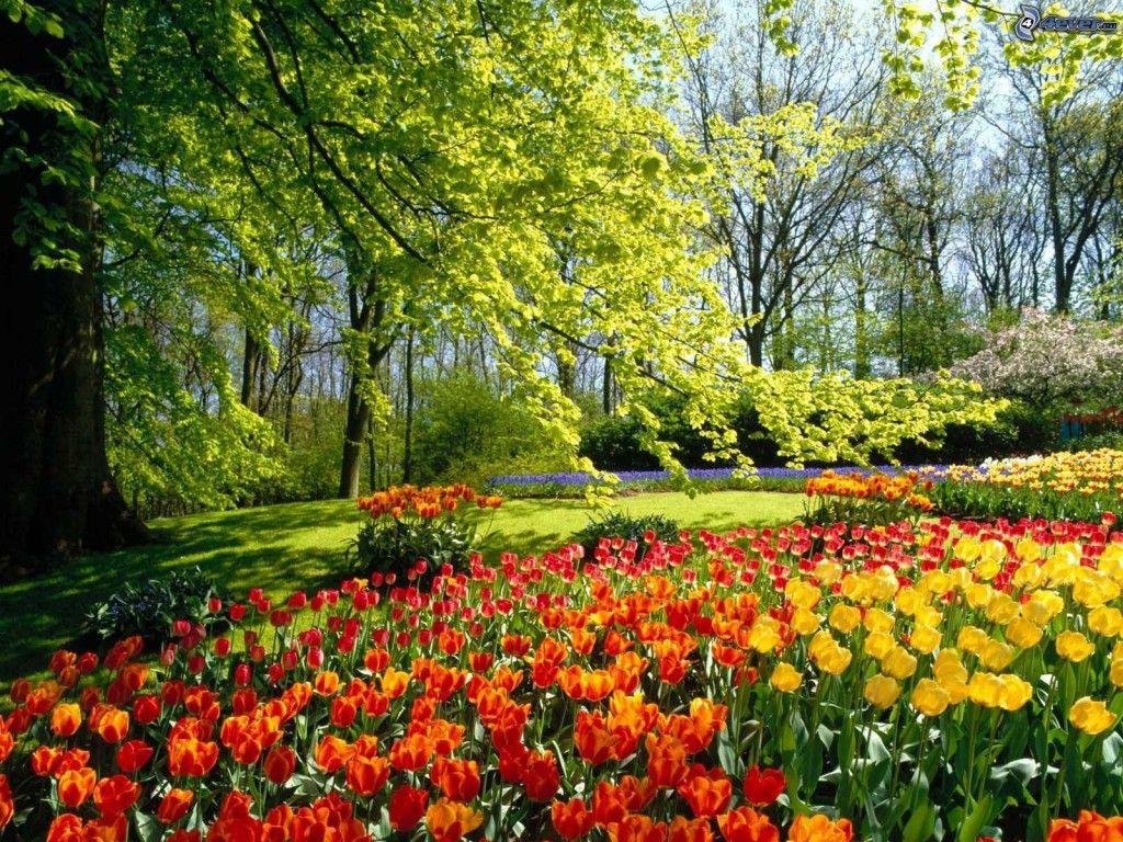 Photo paysage de printemps printemps automne for Paysage jardin