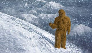 How Does Bigfoot Survive in Winter? | The Crypto Crew