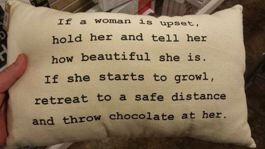 This pillow perfectly describes my girlfriend. And she knows it too. | girlfrien...