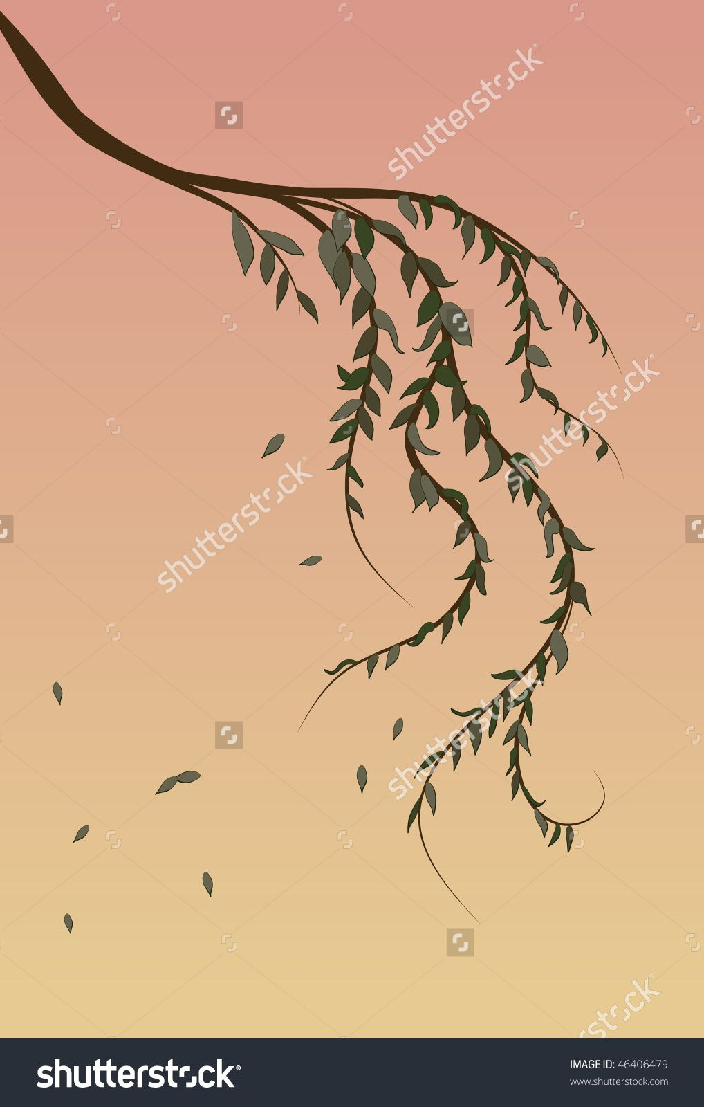 Weeping Willow tree branch background - stock vector | 2 Tree ...