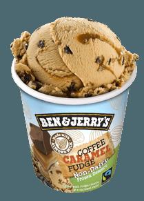 Flavors Ben Jerry S Ice Cream Brands Vegan Ice Cream Brands Ben And Jerrys Ice Cream
