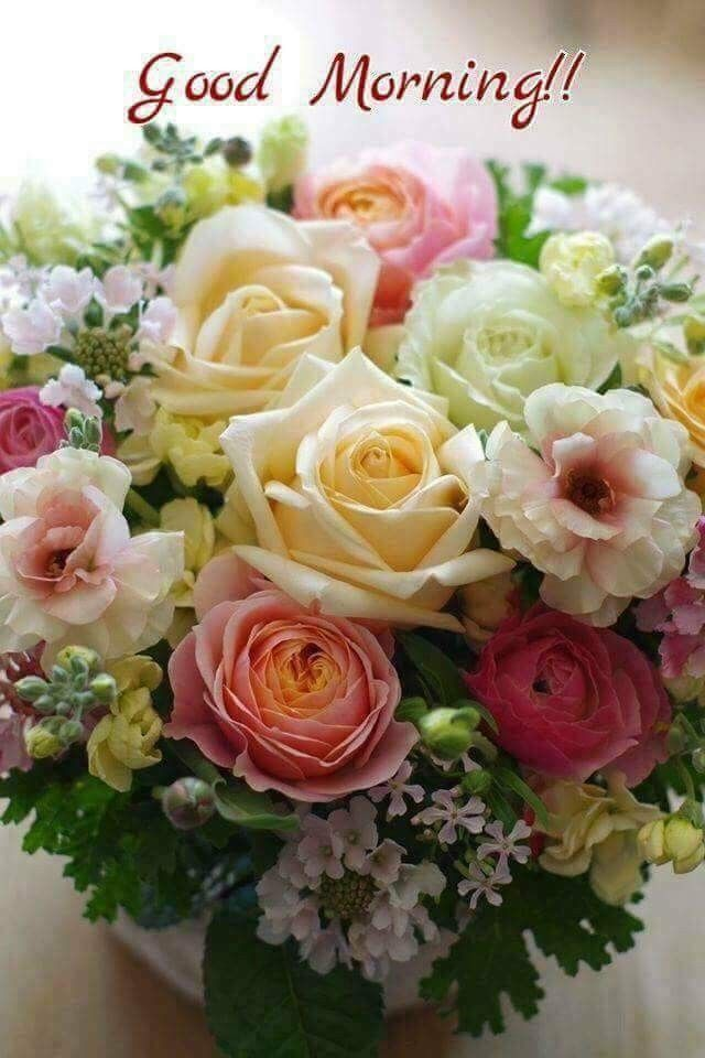 Good morning! Some beautiful flowers for a beautiful friend, YOU ...