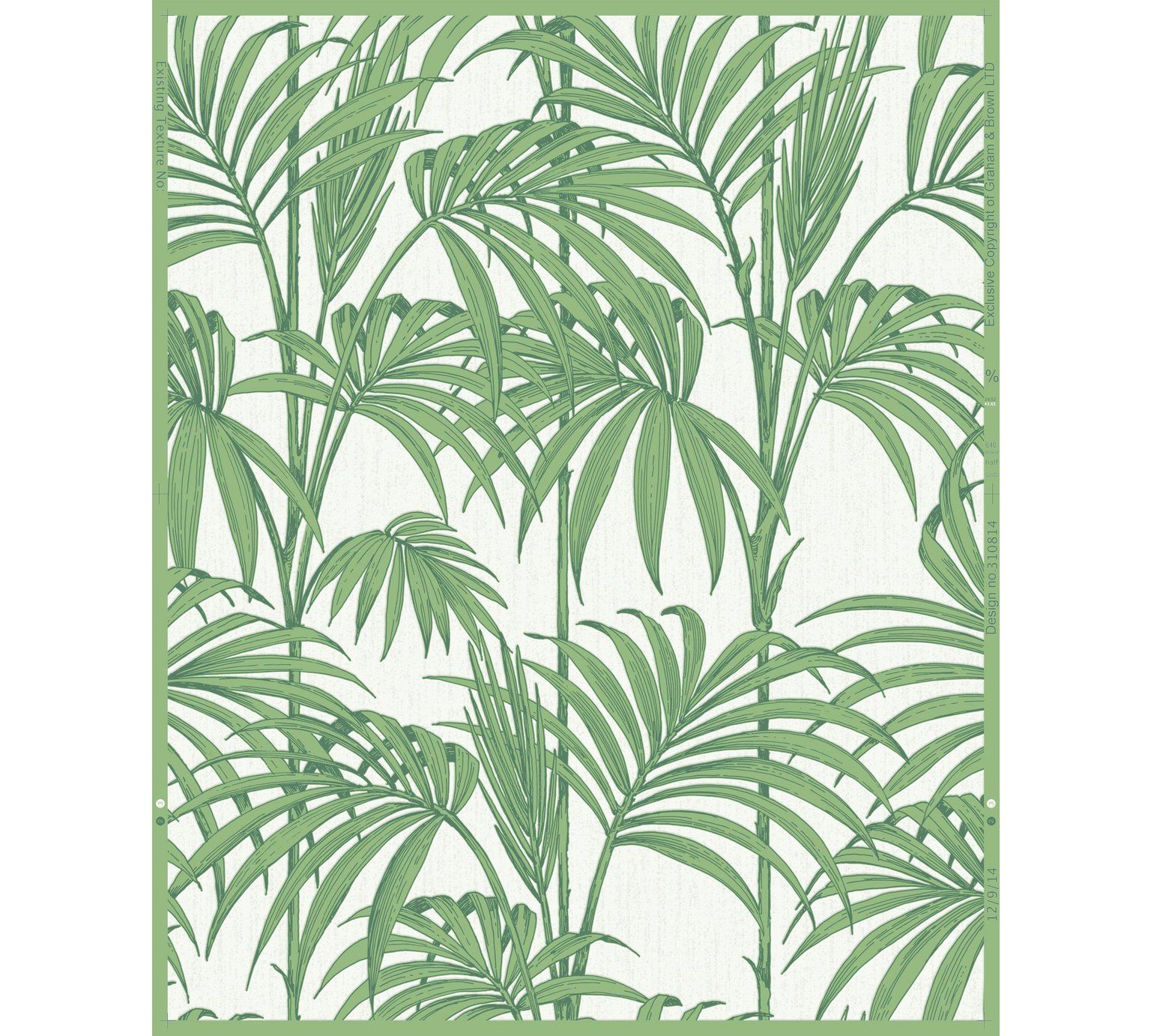 Palm leaf wallpaper image by Sharon Art on wallpaper