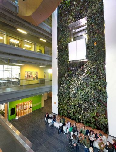 Students at Algonquin College's living wall biofilter