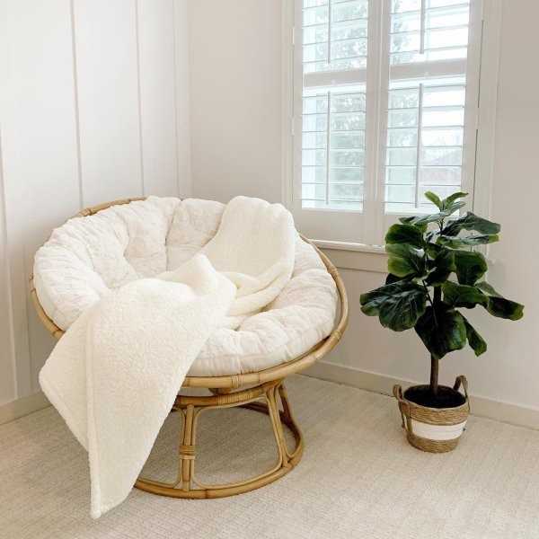 Papasan Chair Frame with Cushion | Pier 1
