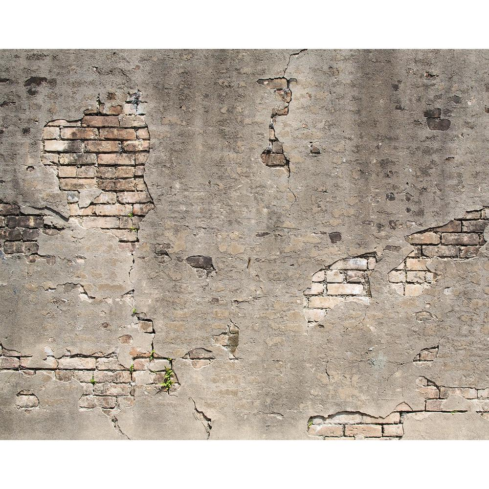 Wall Rogues Broken Concrete Wall Mural Wr50520 The Home Depot Broken Concrete Concrete Wall Wall Wallpaper