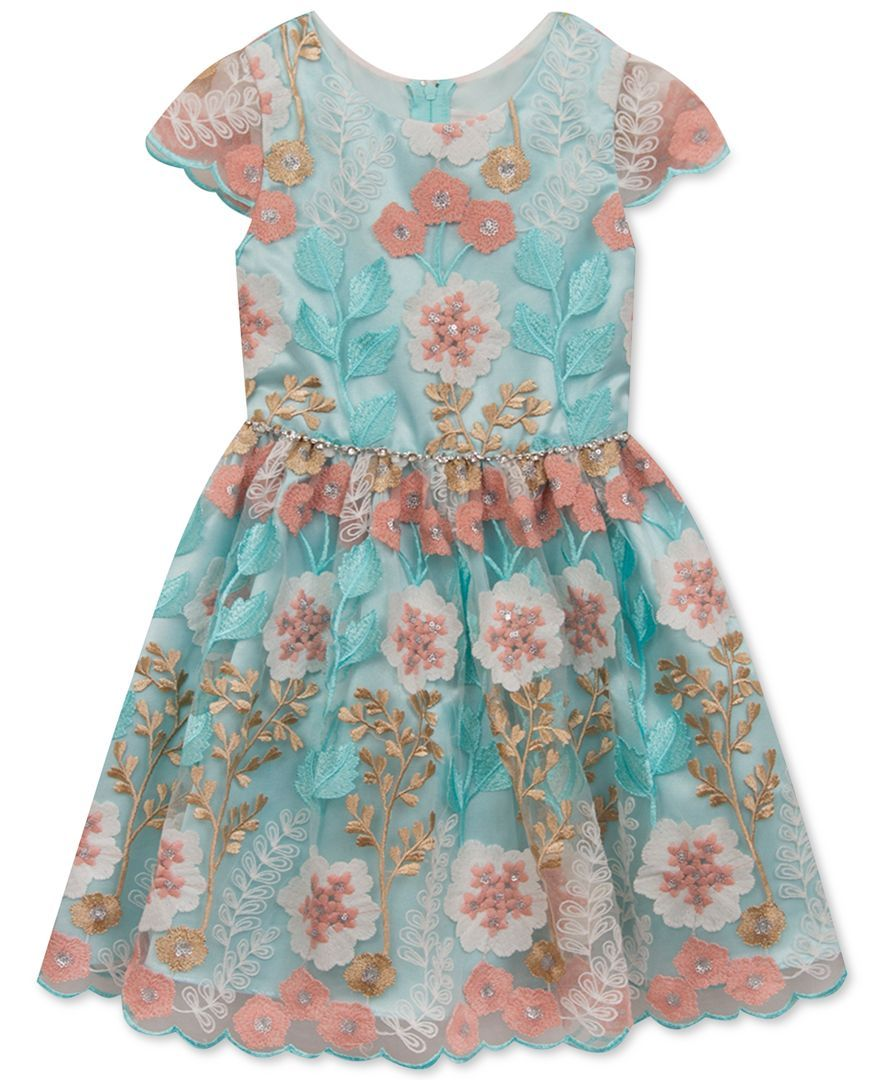Rare Editions Embroidered Floral Party Dress, Toddler Girls, Created ...
