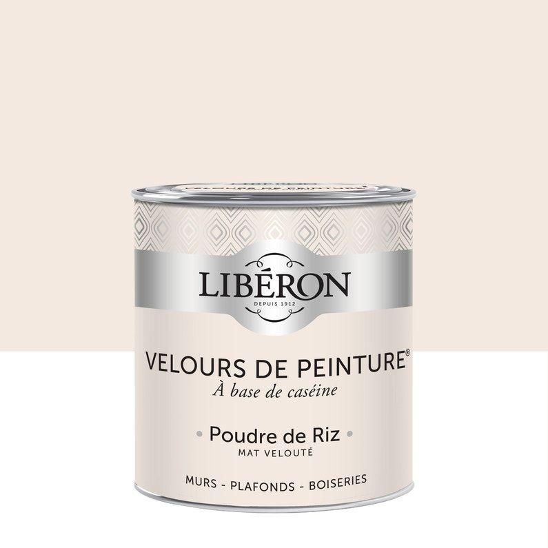 Peinture Multisupport Liberon Poudre De Riz Velours 0 5