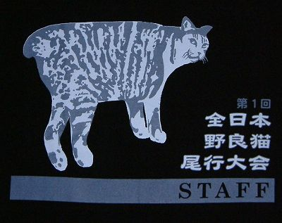 of course cats have staff