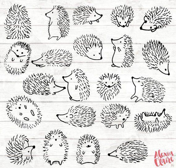 Igel Clipart 22 Igel Doodle ClipArt Igelkarte Wald | Etsy