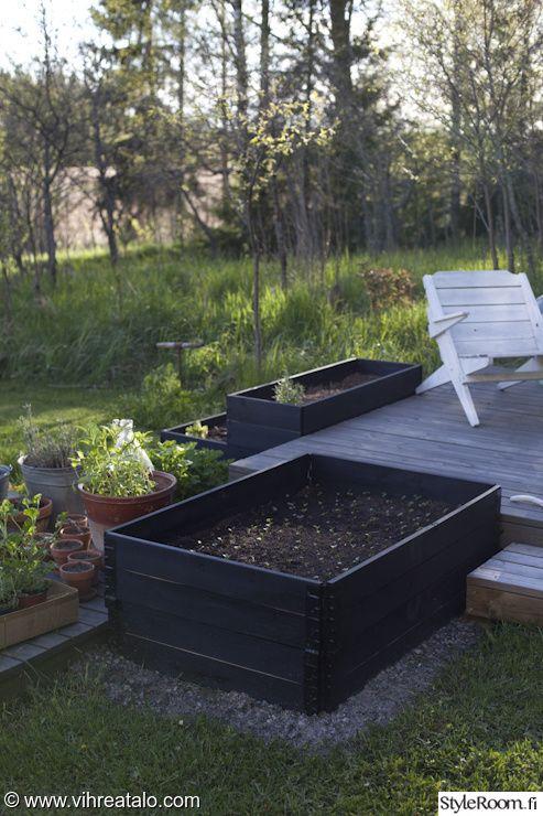 viherpiha,kuukauden piha,viljelylaatikko,viljelylaatikot,puutarha,kevät