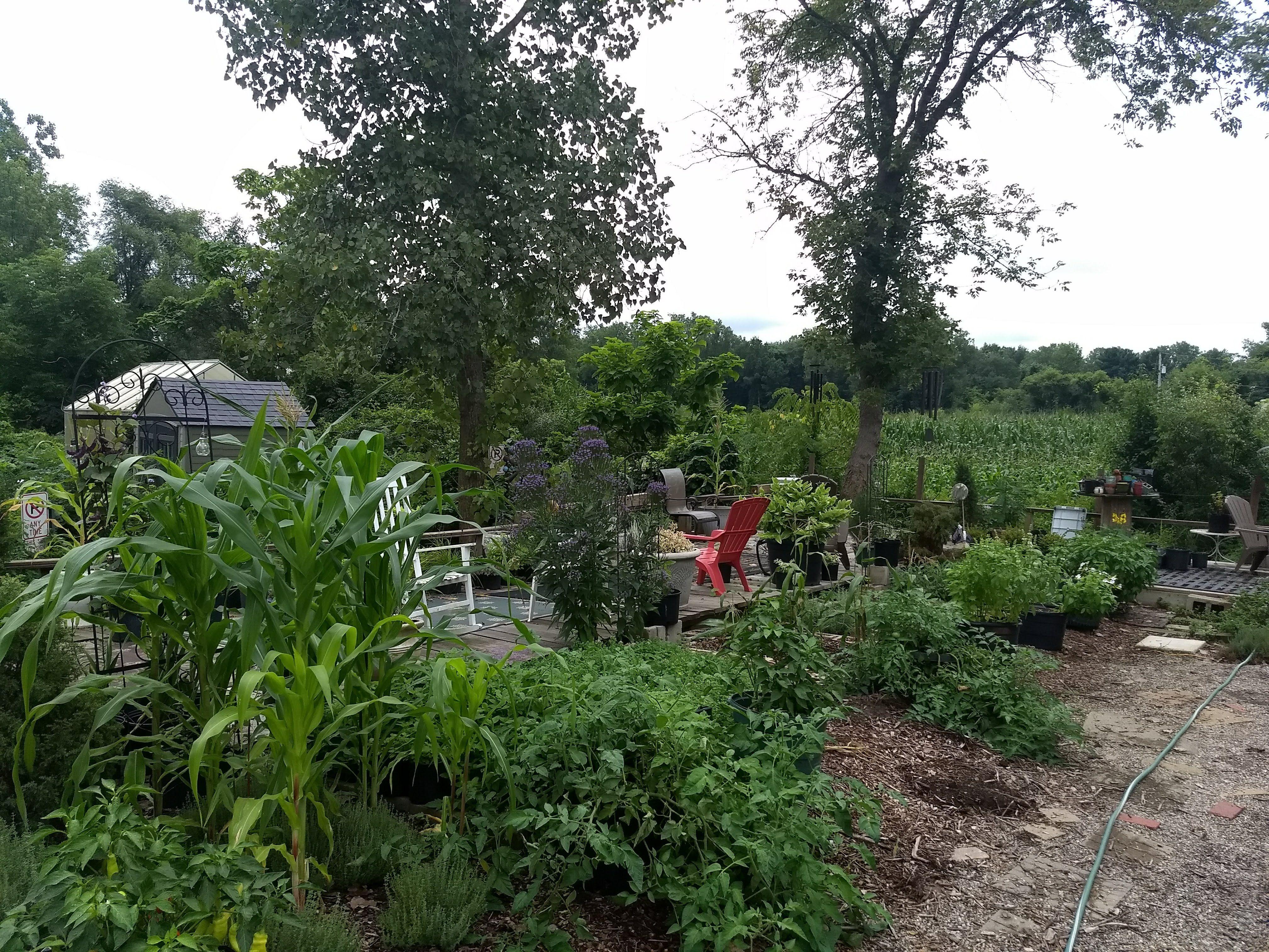 Fangboner Farms in Holland, Ohio | Farm life, Farm ...