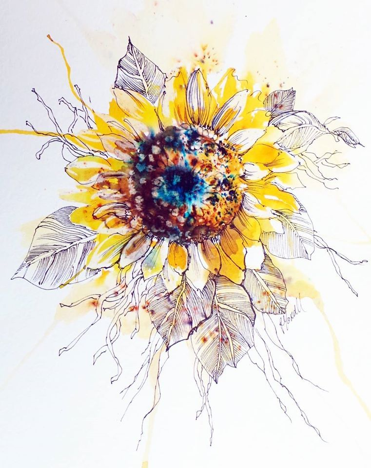 Facebook Sunflower Illustration Drawings Painting