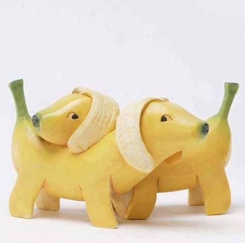 Banana perro dog plátano