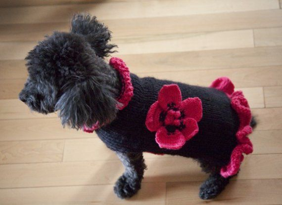 Wool dog sweater with anemone flower by pulldog on Etsy, $45.00 ...