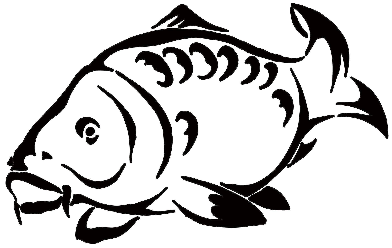 картинки рыбки для карп каждом