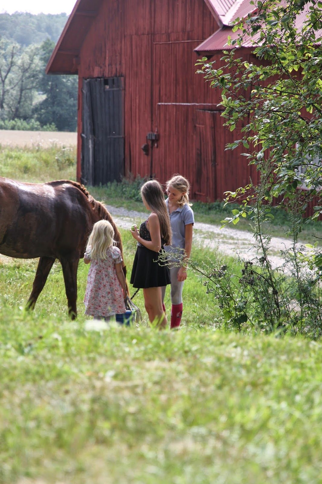 Some children down by the old barn feeding Miss Rose, their parents are on bikes in the area.