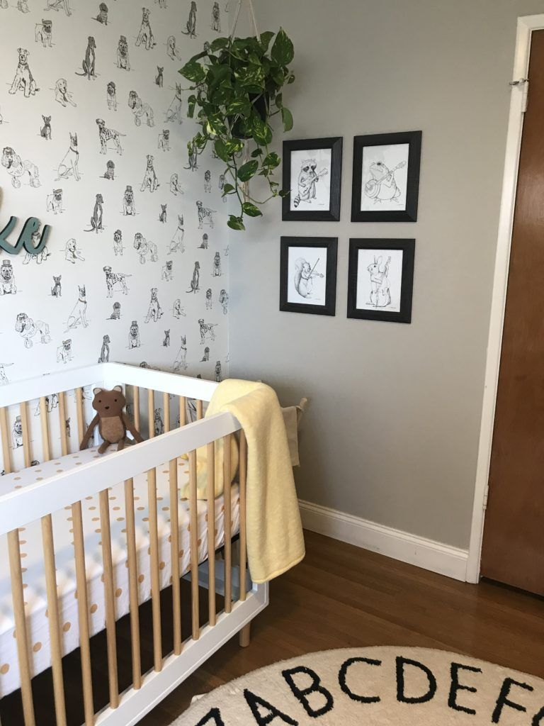 Puppies Polka Dots And Plants Nursery