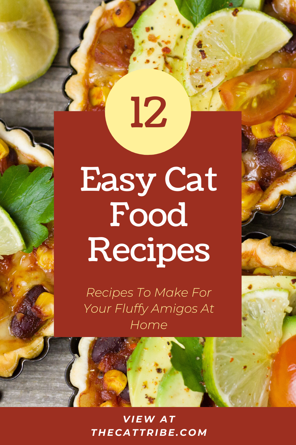 Top 12 Easy Cat Food Recipes The Cat Tribe In 2020 Easy Cat Food Recipe Cooking For Beginners Recipes