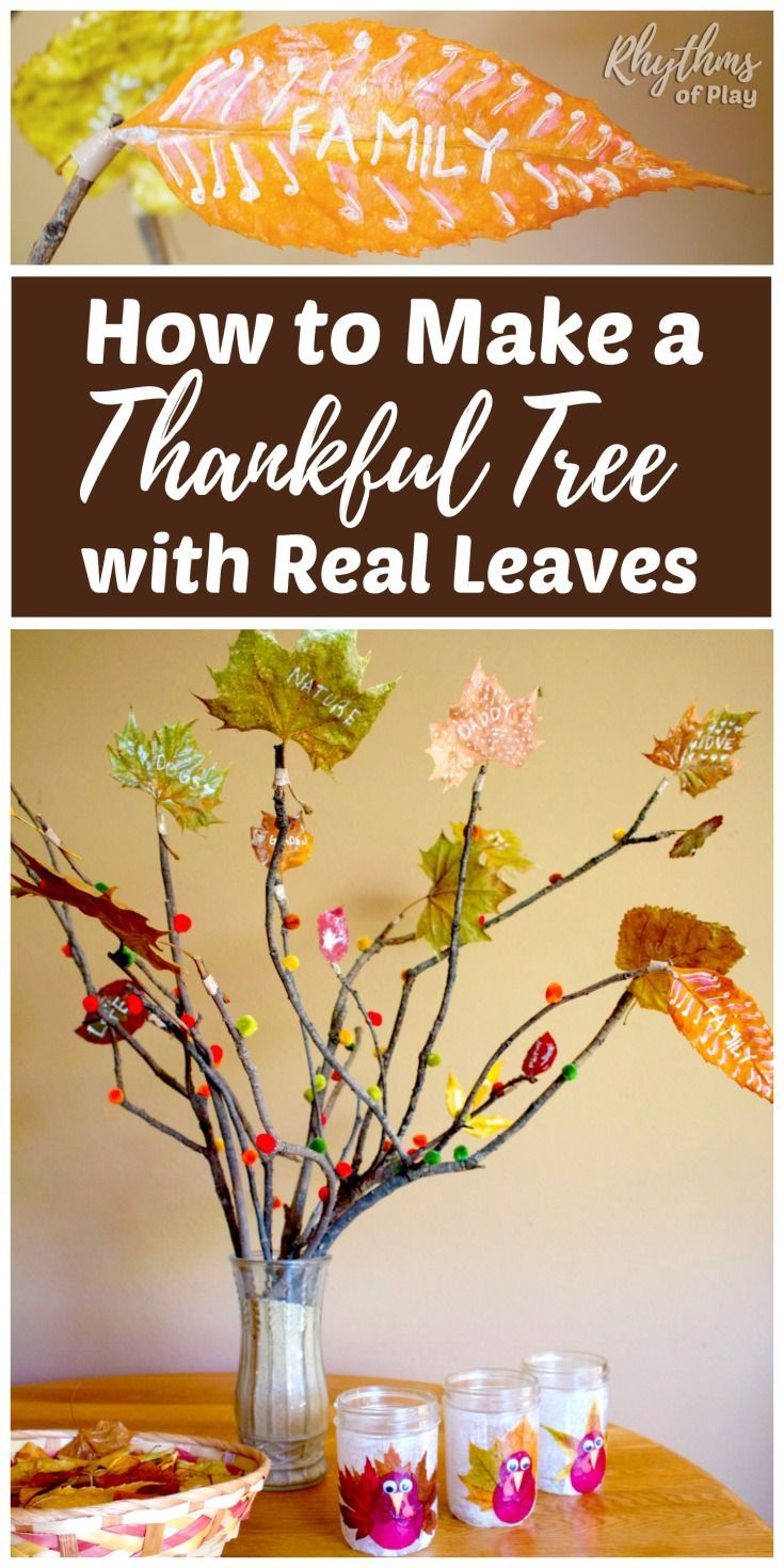 How to Make a Thankful Tree with Real Leaves | Thanksgiving tree ...