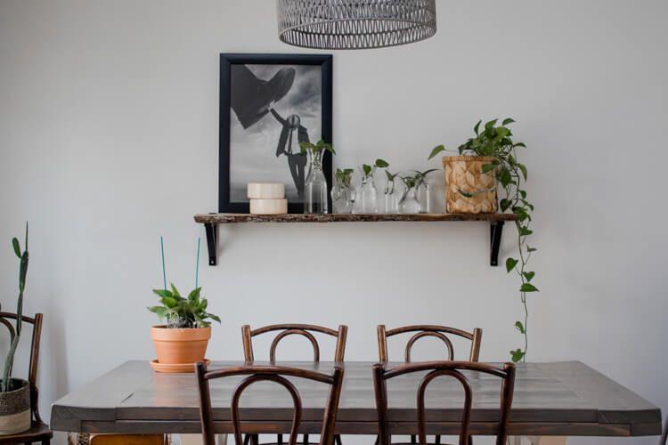 Shelf Decorating Idea: Propagated Plant Shelf | My Breezy ...