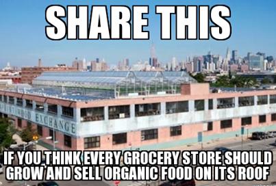 Great Idea ♥ Rooftop garden, Urban farming, Greenhouse