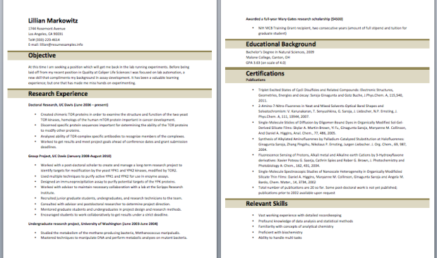 sap trainer resume resume pinterest - Army Resume Sample