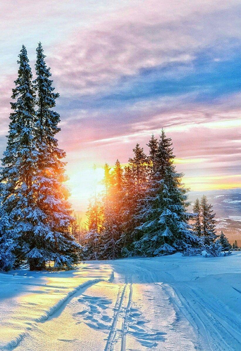 Фото английский пейзаж сергеевна