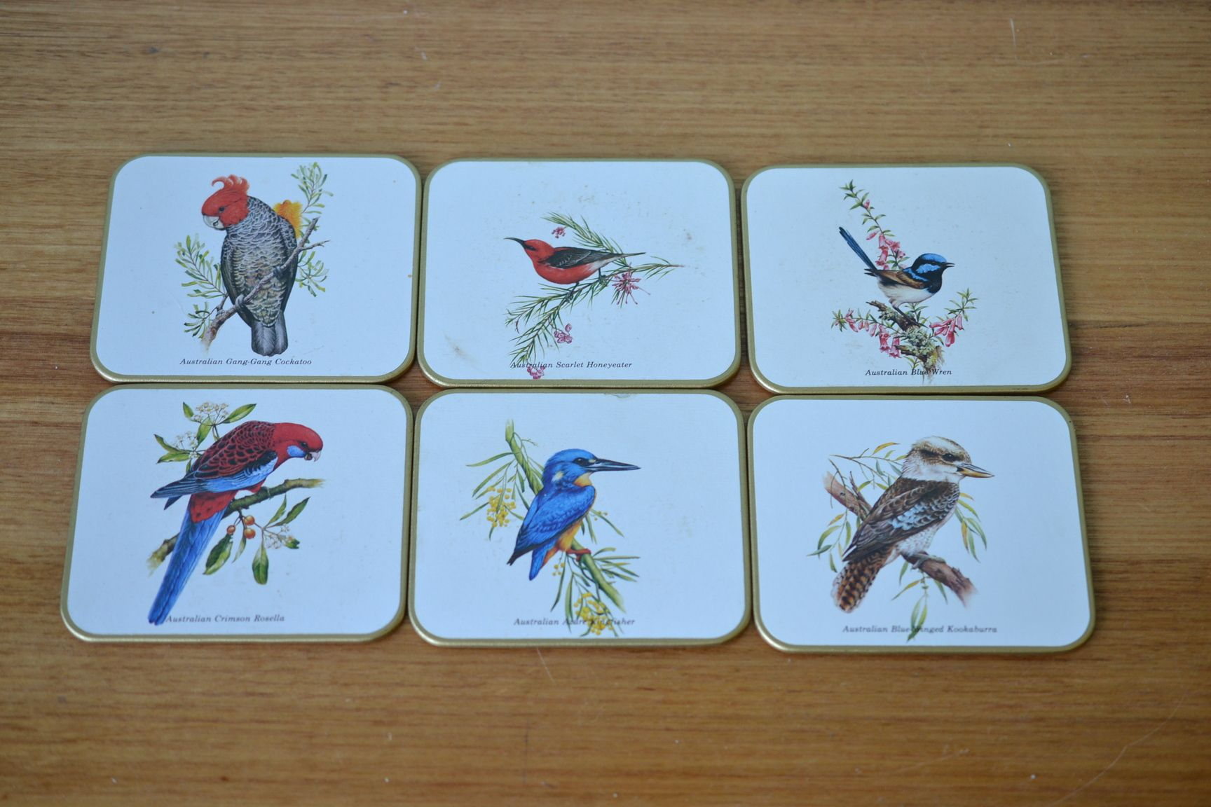 Vintage Jason Coasters Australian Birds Aot1 Funky Flamingo Australian Birds Coasters Bird Boxes