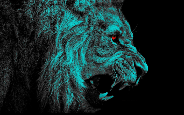 Scarica sfondi leone il buio arte sfondo nero bacheca for Sfondi leone