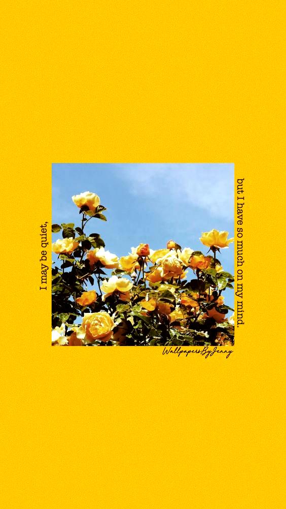 But Wallpapersbyjenny Yellow Tumblr Aesthetic Wallpaper Roses Quotes In 2020 Aesthetic Iphone Wallpaper Wallpaper Tumblr Lockscreen Iphone Wallpaper Yellow