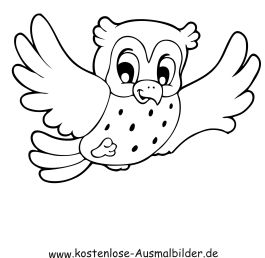 Pin Von Stephanie Mcnelly Auf A Inspirations Birds Owls