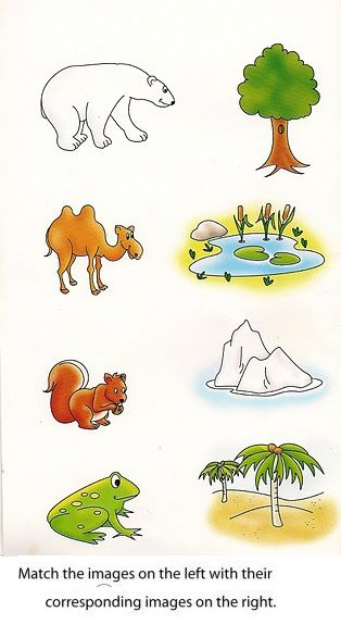 Nice Free Printable Matching Worksheets For Preschool Animals To ...