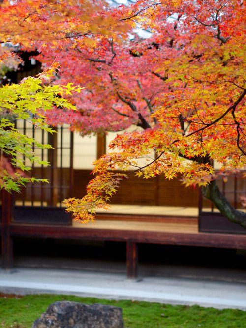 Kennin-ji Temple by Yuya Horikawa    Via Flickr: Kyoto, Japan.