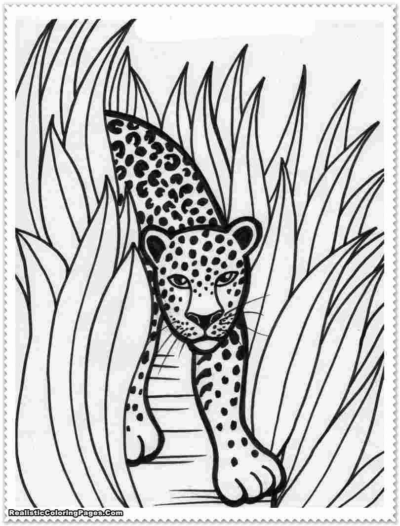 Forest Animals Coloring Book Elegant Apollinaire Leanna Free Coloring Pages Realistic Color In 2020 Dinosaur Coloring Pages Animal Coloring Books Animal Coloring Pages
