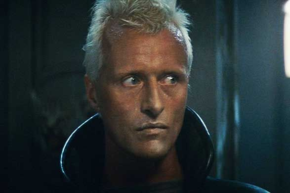 Perfect In Blade Runner, Ladyhawke, Scary