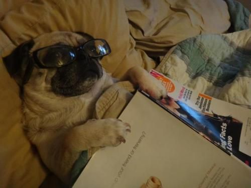 I like to read a bit before going to bed.