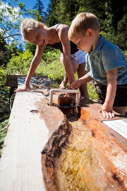 Kinder natur kennenlernen