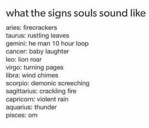What The Signs Souls Sound Like Zodiac Horoscope Memes Zodiac Sign List Zodiac Signs Horoscope