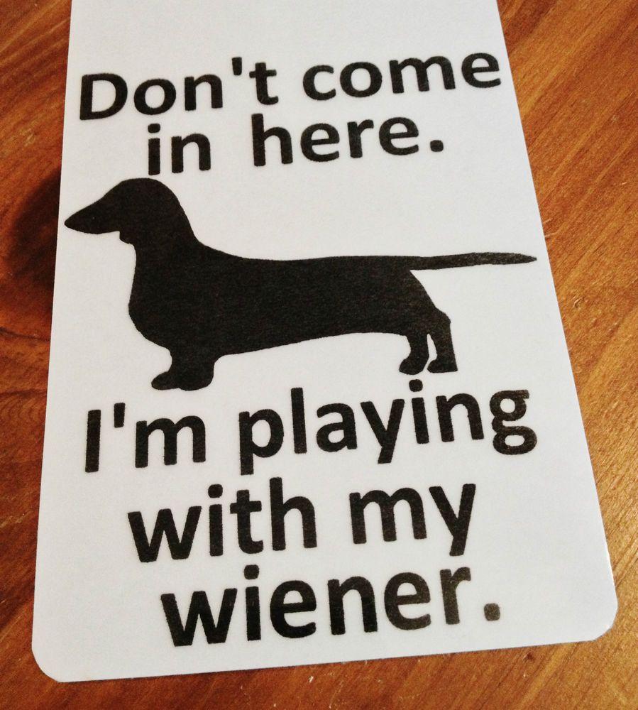 Dachshund Weiner Dog Hanger Sign Hound Doxie Pet Long Hair Wiener