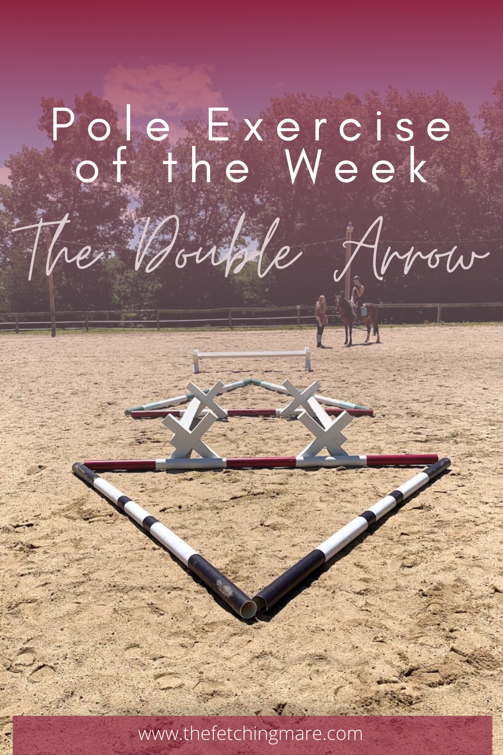 Pole Exercise Of The Week The Double Arrow In 2020 Horse Jumping Exercises Horse Exercises Dressage Exercises