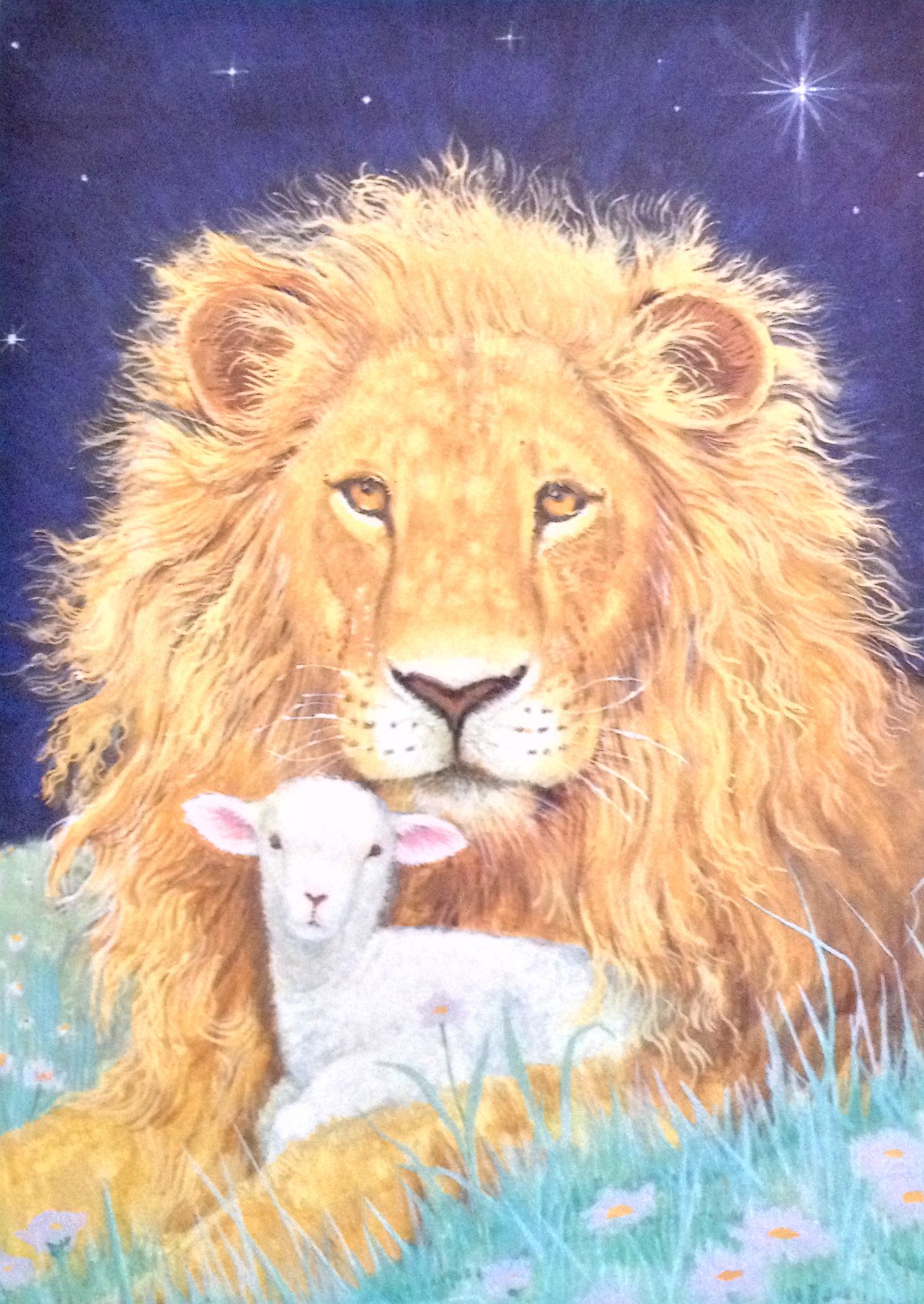 Lion & Lamb Christmas card by Marian Heath. Inside message = \